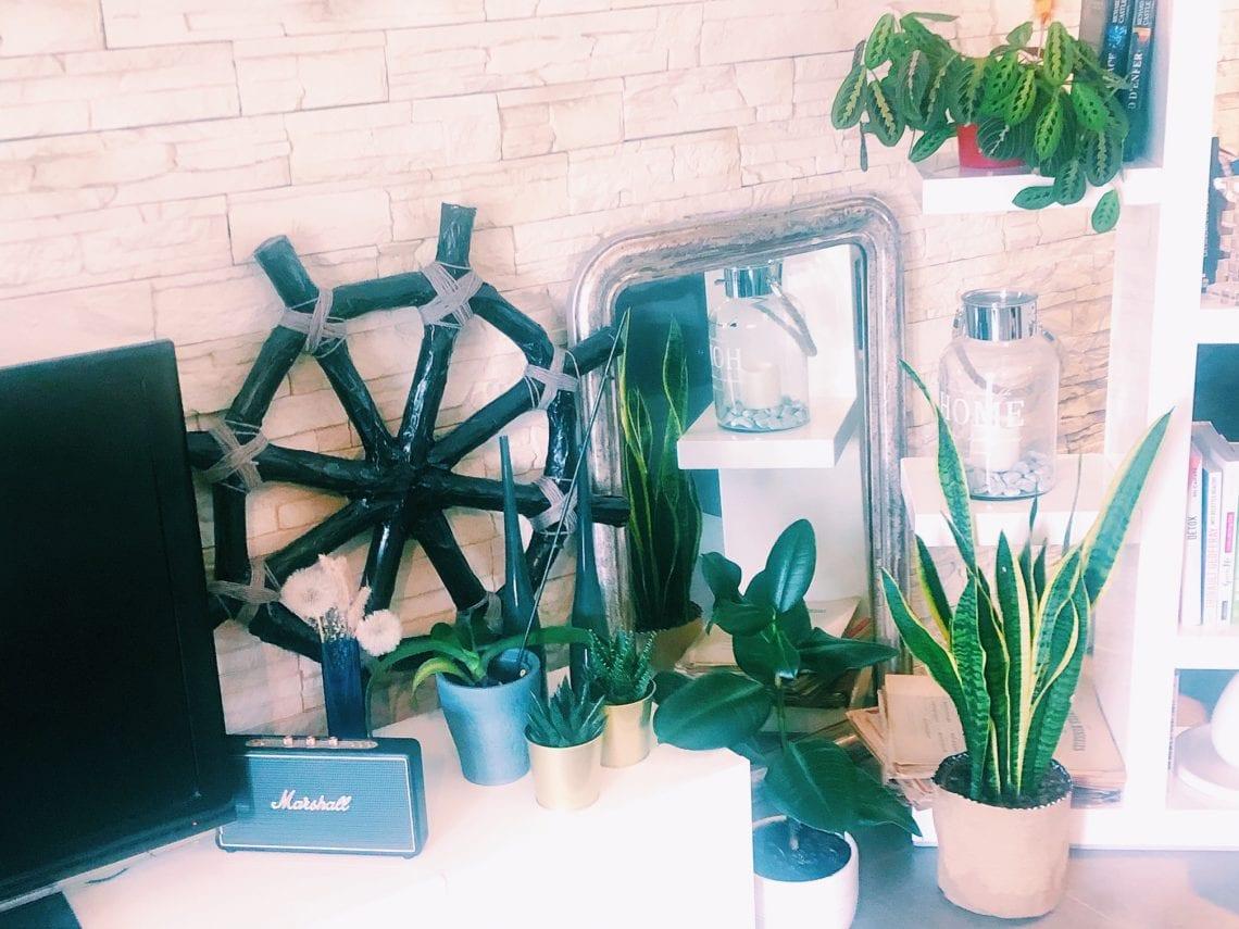 Shake the deco - Coin Green - Plantes vertes - salon