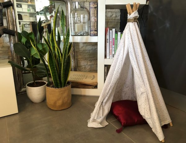 Shake the Deco - DIY tuto Tipi chats