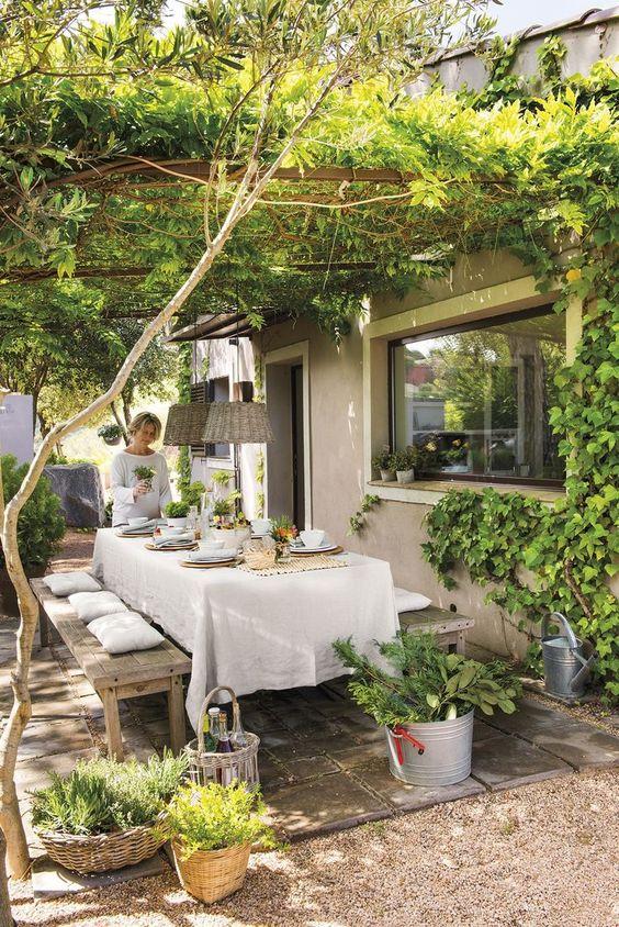 Ombrager sa terrasse - végétale